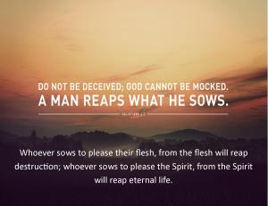 Reaps what He Sows 2014.1