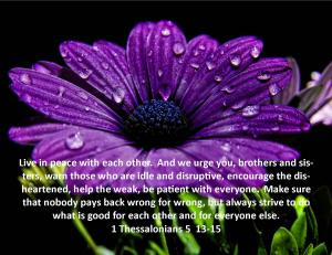 1 Thessalonians 5  13-15