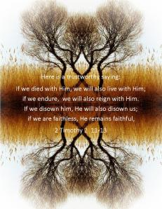 2 Timothy 2  11-13